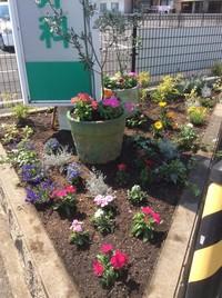 四月花壇_252.jpgのサムネイル画像のサムネイル画像のサムネイル画像